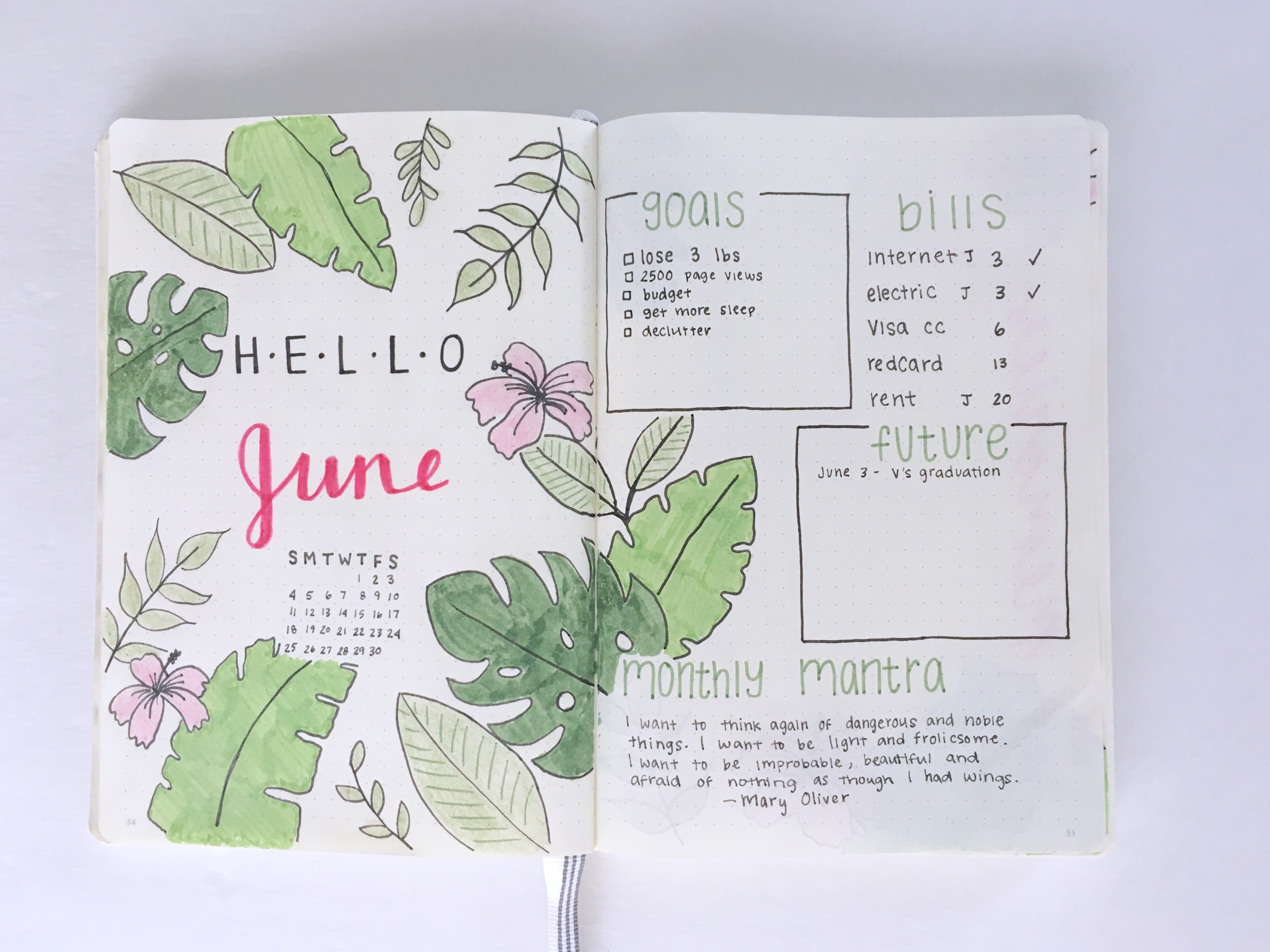 Bullet Journal Spotlight Monthly Pages The leaves i drew include monstera leaf, snake plant. bullet journal spotlight monthly pages